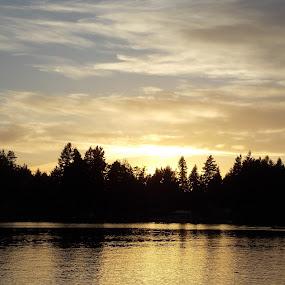 Lake Sawyer Sunset (2) by Sara Swanson - Landscapes Sunsets & Sunrises