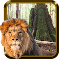 Wild Animals HD APK for Kindle Fire