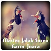 App Master Jalak Suren Gacor Juara apk for kindle fire