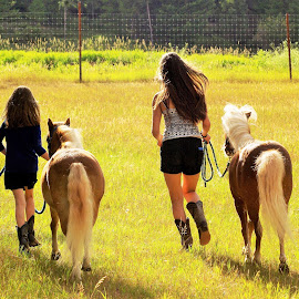 Play time by Giselle Pierce - Babies & Children Children Candids ( miniature horse, girls, little girl, friends, girl, horses, leading, summer )