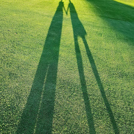 Shadows by Ingrid Anderson-Riley - Instagram & Mobile Android