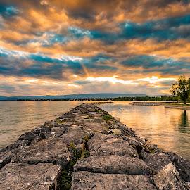 Parc de Vidy by Nikolas Ananggadipa - City,  Street & Park  City Parks ( clouds, canon, park, sunset, parks, trees, lake )