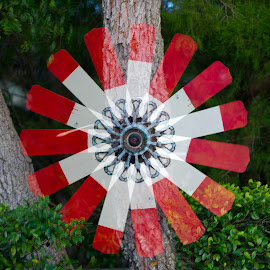 Wind propeller by Greg Varney - Abstract Patterns ( wind, tree, propeller, florida )