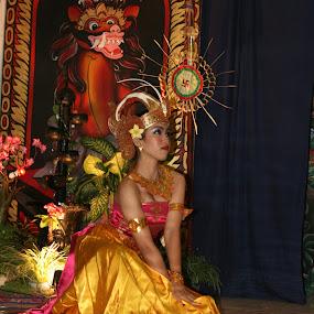 duck by Putu Purnawan - People Musicians & Entertainers