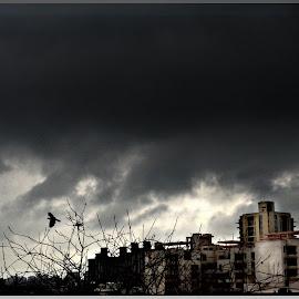 On a cloudy Day by Prasanta Das - City,  Street & Park  Skylines ( cloudy, scene, day, city )