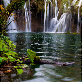 Waterfall Plitvice by Dragan Dervisevic - Nature Up Close Water ( nature, waterfall )