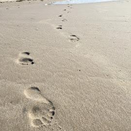 Fußabdrücke by Marianne Fischer - Nature Up Close Sand