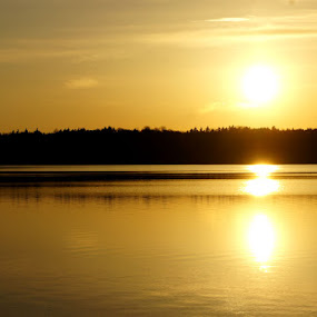 by Fatemeh Azadbakht - Landscapes Waterscapes ( sunset, trees, ottawa, lake, sun )