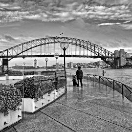 shb by Glen John Terry  - Buildings & Architecture Bridges & Suspended Structures ( harbour, bridge, sydney )