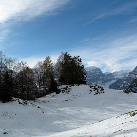 Braunwald, Glarus, Switzerland by Serguei Ouklonski - Landscapes Mountains & Hills ( mountain, wood, no person, frost, travel, landscape, frozen, sun, nature landscape, sky, nature, tree, cold, cloud - sky, no people, snow, cold temperature, weather, switzerland, clouds, hill, grass, scenics, forest, scenic, beauty in nature, fair weather, mountain range, blue, sunset, outdoor, outdoors, trees, scenery, day, glarus )