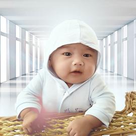 baby dean by Alexander Valdez - Babies & Children Babies ( d, dogs, drop, drops, daisy, design )