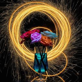 kembangfire 02 by Tt Sherman - Abstract Light Painting ( firework, glass, flowers )
