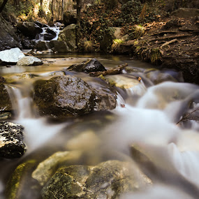 by Christos Psevdiotis - Landscapes Forests ( water, slow shutter speed, stone, rock, forest, river )