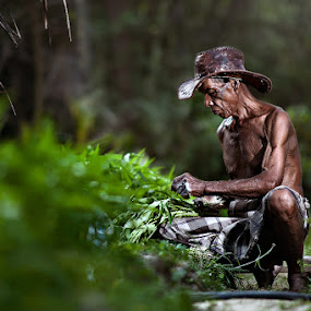 Harvest by Zulkifli Omar - People Portraits of Men ( portraiture, human interest, men, people )