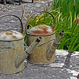 IOW watering cans by Michael Moore - Artistic Objects Other Objects