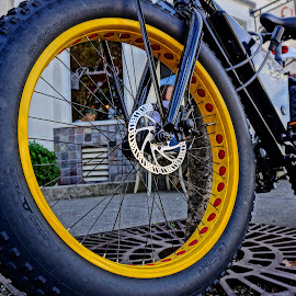 Fat Tires by Barbara Brock - Transportation Bicycles ( bike, fat tire bicycle, mountain bike, yellow bicycle, bicycle )
