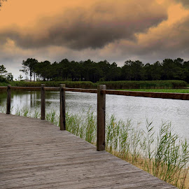 Lagoon by Gil Reis - Buildings & Architecture Bridges & Suspended Structures ( clouds, water, life, sky, nature, lagoons, places, portugal )