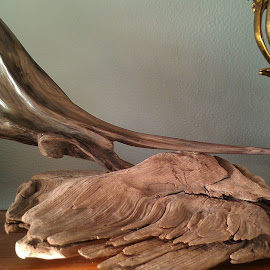 First driftwood art by Gene Richardson - Artistic Objects Other Objects