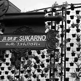 Sukarno Street by Mulawardi Sutanto - Black & White Street & Candid ( indonesia, street, asia afrika, travel, bandung, city )