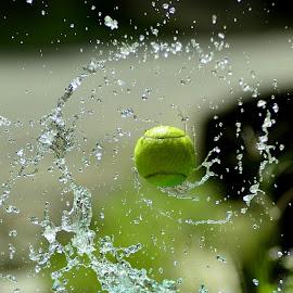 o by Sabdo Bintoro - Sports & Fitness Tennis
