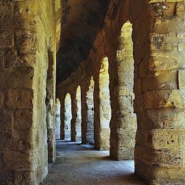 Tudy chodila historie... by Miloš Stanko - Buildings & Architecture Public & Historical ( tunisko, el djem )