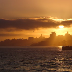 San Francisco Sunrise by VAM Photography - Landscapes Sunsets & Sunrises ( water, nature, sunrise, landscape, san francisco,  )