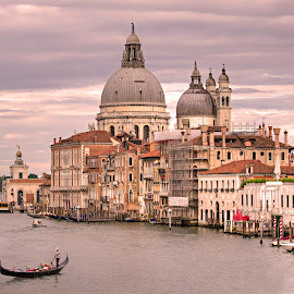 Grand Canal of Venice by Peter Kennett - City,  Street & Park  Vistas ( salute, water, gondola, church, grand canal, santa maria della salute, venice, basilia, boat, italy, canal )