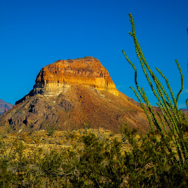 Extinct Volcano Core, by Dave Walters - Landscapes Deserts ( lava, volcano, big bend national park, texas, colors )