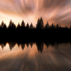Sunset glow by Anna Drobyazko - Digital Art Places ( reflection, nature, colors, sunset, sun light, pine trees, natural beauty )