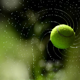tennis by Sabdo Bintoro - Sports & Fitness Tennis