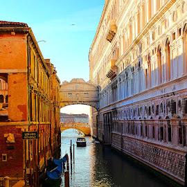 Venise - Le pont des soupirs vue d'arrière by Gérard CHATENET - Buildings & Architecture Bridges & Suspended Structures
