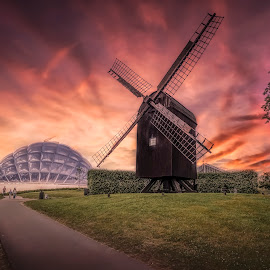 The Mill by Ole Steffensen - Buildings & Architecture Other Exteriors ( mill, park, sunset, denmark, aarhus, botanical  garden )