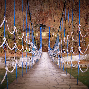 Bridge in the park..... :-) by Ana Wisniewska - Buildings & Architecture Bridges & Suspended Structures