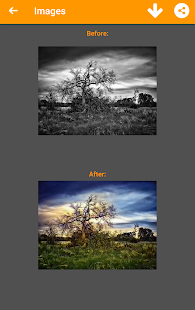 Black and White Photo Colorizer - Chromatix Screenshot