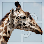 Game Best Free Puzzles for Kids: Giraffes Jigsaw APK for Windows Phone