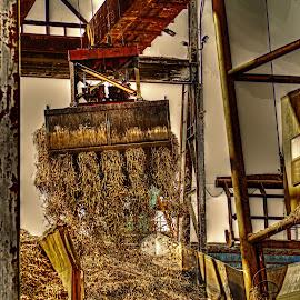 SUGARCANE GRAB by Ron Olivier - Digital Art Things ( sugarcane grab,  )