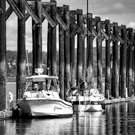 At dock  by Todd Reynolds - Black & White Street & Candid