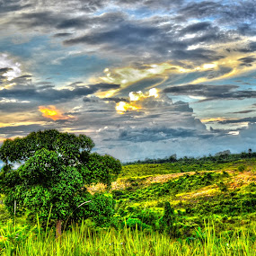 bukit pendreh by Handy Nordy Fariza - Backgrounds Nature