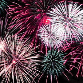 Pink Fireworks 3 by B Lynn - Abstract Fire & Fireworks ( abstract, colorful, bright, firework, colors, fun, beauty, party, pretty, fire, lights, beautifulm, loud, color, outdoors, fireworks, festival, night, pink, celebration, celebrate, breast cancer awareness, lighting, mood factory, hot pink, mood, scents, mood-lites, sassy, brighten our world )