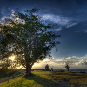 Late Evening Shade by Joshua T. Wood - Landscapes Prairies, Meadows & Fields ( umatac, guam, fort soledad )