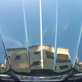 Jaguar e casa. by Luis DuarteSantos - Uncategorized All Uncategorized