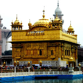 Golden temple by Divnoor Buttar - Buildings & Architecture Public & Historical ( golden temple, sikh, sikhism, indian temples, amritsar )