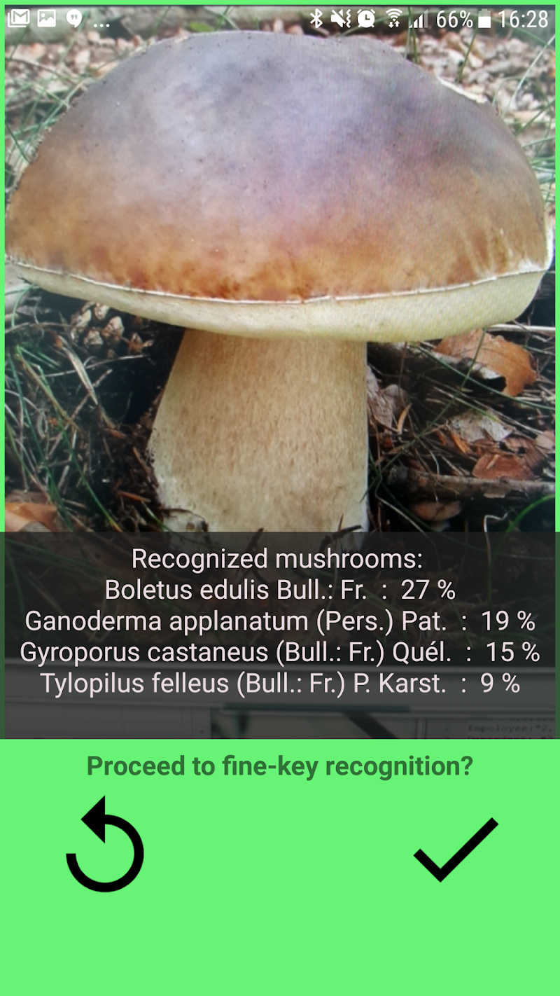 Mushrooms app Screenshot 0