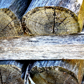 Woodwork ...  by Desiree Havenga - Abstract Patterns