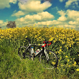 Summer Sun by Rich Buxton - Transportation Bicycles ( clouds, cyclist, blue sky, bike, cycling, summer, flowers )