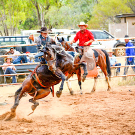 by Casey Hucks - Sports & Fitness Rodeo/Bull Riding