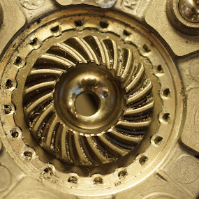 spending too much time at mechanics by Sandra Cannon - Abstract Macro