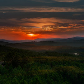 Sunset Over Sea Pines #1 by Emilio Cabida - Landscapes Sunsets & Sunrises ( pines, clouds, mountains, sunset, trees, emerad )