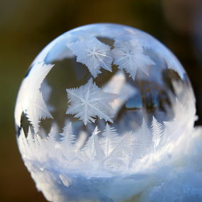Soap Bubble Ice Crystals by Skip Spurgeon - Abstract Patterns ( crystals, bubble, cold, ice crystals, snow )