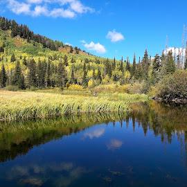 Silver Lake by Melissa Papaj - Instagram & Mobile Android ( water, lakes, lake )